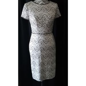 Stunning Adrianna Papell Lace Beaded Dress